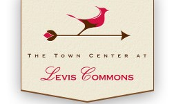 Image for Town Center at Levis Commons