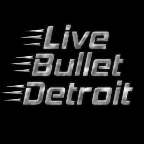 Select Live Bullet Detroit Bob Seger Tribute