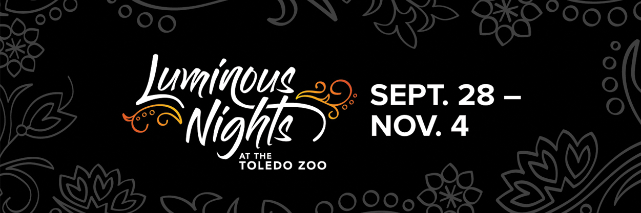 Luminous Nights Sept. 28-Nov. 4 at The Toledo Zoo
