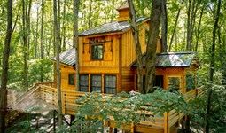 Select https://metroparkstoledo.com/discover/cannaley-treehouse-village/