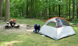 Select https://metroparkstoledo.com/outdoor-adventures/camping/